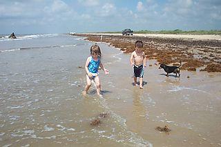 Beach 6-1-08 017