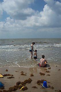 Beach 6-1-08 021