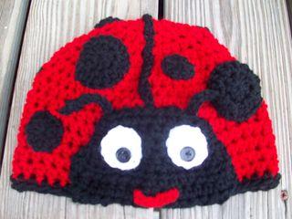 Ladybug 005