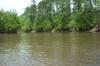 Creek408_029