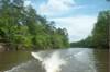 Creek408_040