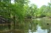 Creek408_044